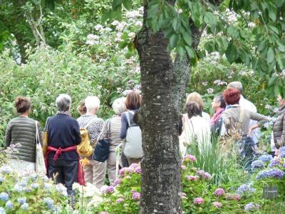 Visite guidée de la pépinière et de ses jardins